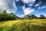 Landblick - Norwegen