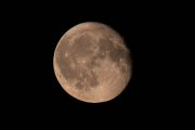 1DX24677 - Mond 08/201