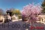 Koreanischer Garten, Japanischer Garten, Gärten der Welt, Berlin