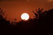1DX20394 Neuholland Sonnenaufgang