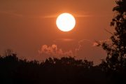 1DX20604 Neuholland Sonnenaufgang
