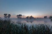 5DS_3338 Neuholland Sonnenaufgang