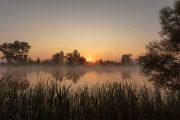 5DS_3362 Neuholland Sonnenaufgang