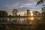 5DS_3716 Neuholland Sonnenaufgang