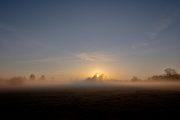 5G8A5275-Sonnenaufgang Neuholland