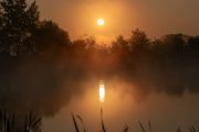 5G8A5898 Neuholland Sonnenaufgang