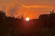 5G8A6310 Neuholland Sonnenaufgang