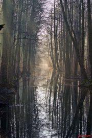 Spreewald - Leipe