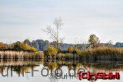 Stausee im Herbst