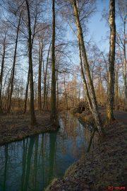 Stich im Spreewald - Leipe