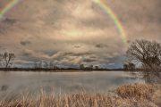 5DS_2749 Neuholland Stausee Regenbogen