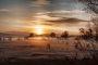 5G8A6894 Sonnenaufgang Neuholland