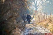Herbst Spaziergang mit Stute - Großziethen