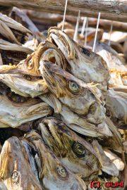 Fisch getrocknet - Norwegen