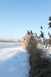 Fischteiche Spreewald