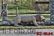 Schlafender Löwe, Lichtenberg