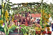 Erntedankfest, Neuholland